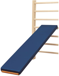 G - Stall Bar Incline Board