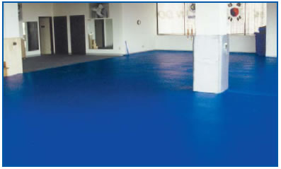 Seamless Flooring with structural uprights